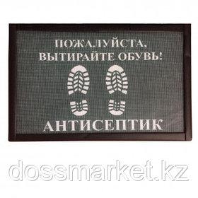 "Дезковрик ""Эко"" для дезинфекции обуви, размер 500*500 мм"