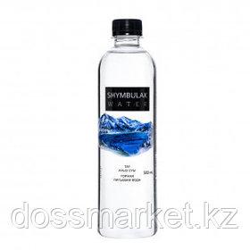 """Вода негазированная питьевая """"Shymbulak Water"""", 0,5 л"""