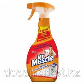 """Средства для удаления извести, налета и ржавчины Mr.Muscle """"Эксперт устранитель налета"""", 500 мл"""