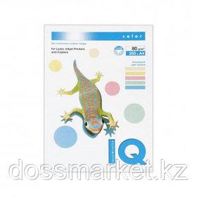 Бумага IQ Color Pastel, А4, 80 г/м2, 250 листов, 5 пастельных цветов