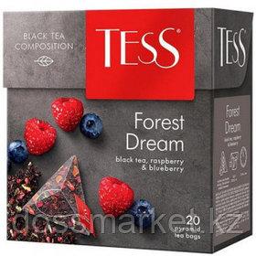 Чай Tess Forest Dream, черный фруктовый, 20 пирамидок
