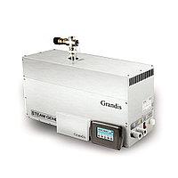 Парогенератор Grandis DS 240, мощность 24 кВт