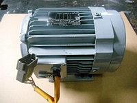 Электродвигатель 546002810 CARRIER / 54-60028-10