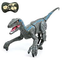 Динозавр радиоуправляемый 'Велоцираптор', свет и звук, работает от аккумулятора, цвет серый