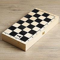 Настольная игра 3 в 1 'Классическая' нарды, шахматы пластик, шашки, (доска дерево 40х40 см)