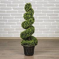 Дерево искусственное 'Завиток' 102 см