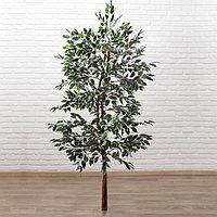 Дерево искусственное 'Фикус Фолиа' 150 см