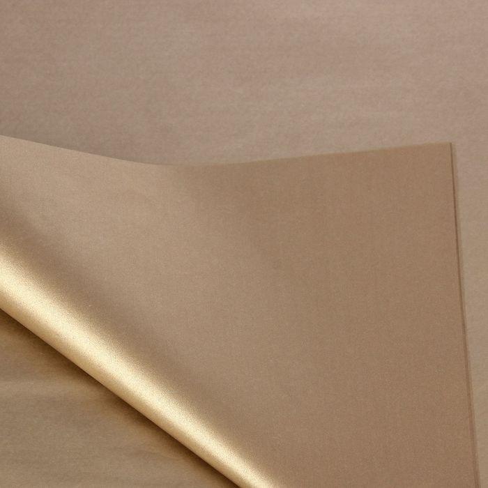 Бумага тишью 'Платина металл', 50 х 76 см, 24 шт. - фото 1