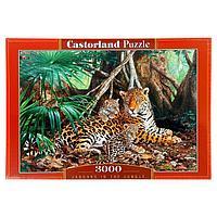 Пазл 'Ягуары в джунглях', 3000 элементов