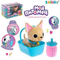 Интерактивная игрушка 'Мой питомец', собачка, со световыми и звуковыми эффектами