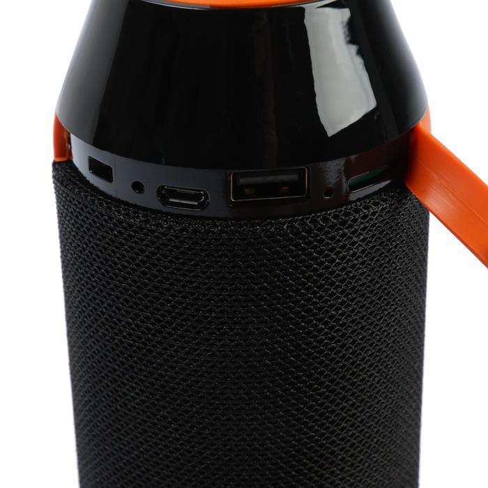 Портативная колонка Sonata SK1011BK, microSD/USB/FM, Bt 5.0, 2х5 Вт, 1200 мАч, чёрная - фото 4