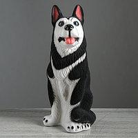 Копилка 'Собака хаски', флок, чёрный цвет, 42 см