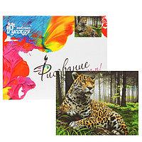 Картина по номерам 'Леопард в лесу' 40х50 см, 24 цвета