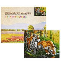 Картина по номерам 'Тигры на водопое' 20 цветов