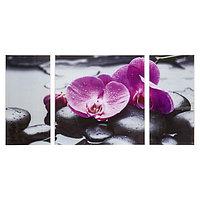 Картина модульная на стекле 'Орхидеи' 2-25*50, 1-50*50 см, 100*50см
