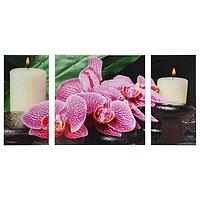 Картина модульная на стекле 'Орхидея со свечой' 2-25*50, 1-50*50 см, 100*50см