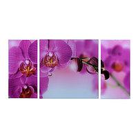 Картина модульная на стекле 'Орхидеи' 2-25*50, 1-50*50 см 100*50см