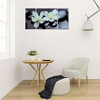 Модульная картина на стекле 'Пара орхидей' 2-25*50см, 1-50*50см 100*50см