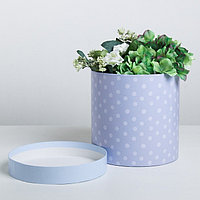 Подарочная коробка круглая 'Нежная', 20 x 20 см
