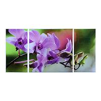 Картина модульная на стекле 'Цветы' 2-25*50, 1-50*50 см, 100*50см