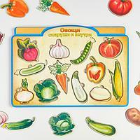 Пазл-сортер 'Овощи снаружи и внутри'
