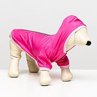 Куртка-ветровка со светоотражающими полосками, S (ДС 20-22 см, ОШ 26 см, ОГ 30-34 см)