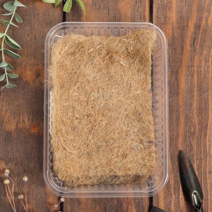Набор для выращивания на балконе микрозелени Настурция - фото 2