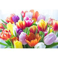 Картина на подрамнике 'Тюльпаны' 40*50 см