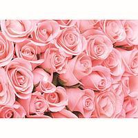 Фотообои К-116 'Романтика' (8 листов), 280 x 200 см