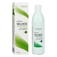 Шампунь Wellness при выпадении волос с крапивой, 300 мл
