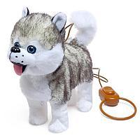 Интерактивная собака 'Мой хаски' ходит, лает, поёт песенку, виляет, хвостиком