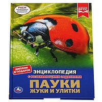 Энциклопедия А4 'Пауки, жуки, улитки'