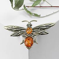 Брошь 'Янтарь' муха острокрылая, цвет коньячный в бронзе