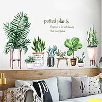 Наклейка пластик интерьерная цветная 'Домашние растения' 30х90 см набор 2 листа
