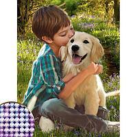 Алмазная вышивка с частичным заполнением 'Мальчик с собакой', 30 х 40 см, холст. Набор для творчества