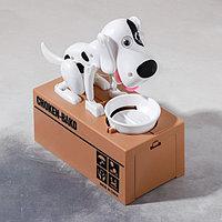 Копилка механическая 'Собака с тарелкой', цвета МИКС