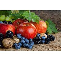 Картина на подрамнике 'Фрукты, ягоды, орехи' 50*100 см