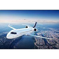 Картина на подрамнике 'Полёт' 50*100 см