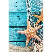 Картина на подрамнике 'Морская звезда' 50*100 см