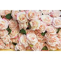 Картина на подрамнике 'Россыпь роз' 50*100 см