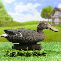 Фигура подсадная 'Широконоска' утка 41 х 14 х 22 см