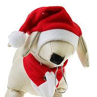 Костюм 'Новогодний' для собак с шарфиком, S- M (обьем головы 26-28 см, высота 18-20 см)