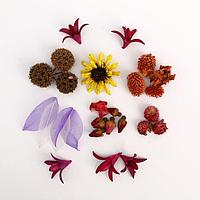 Набор природного декора 'Цветочный переполох'