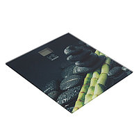Весы напольные Irit IR-7257, электронные, до 180 кг, 2хААА, стекло, рисунок 'бамбук и камни'