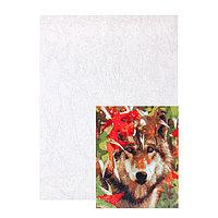 Картина по номерам на холсте Палитра, 30 x 40 см 'Волк в осеннем лесу'