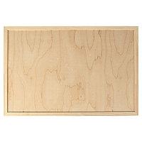 Планшет деревянный, с врезанной фанерой, 40 х 60 х 3,5 см, глубина 0.5 см, сосна