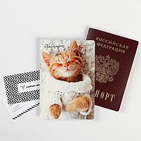 Обложка для паспорта 'Котенок' (1 шт)