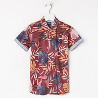 Рубашка для мальчика с коротким рукавом, цвет бордо, рост 122 (7 лет)