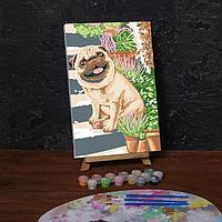 Картина по номерам на холсте с подрамником 'Мопс' 20х30 см