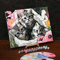 Картина по номерам на холсте с подрамником 'Котята' 40х50 см